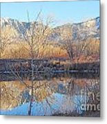 Winter Feb 2015 Colorado Metal Print