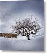 Winter Fields Metal Print