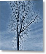 Winter Floods Metal Print