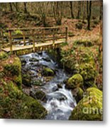 Winter Footbridge Metal Print
