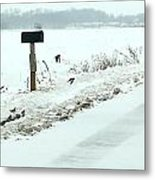 Winter Foragers Metal Print