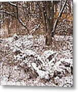 Winter Forest Panorama Metal Print