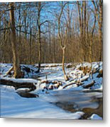 Winter Forest Stream Metal Print
