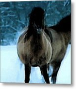 Winter Friendship  Metal Print