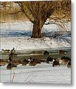 Winter Geese - 01 Metal Print