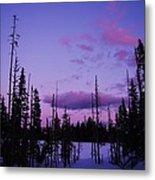 Winter Glow Metal Print by Angi Parks