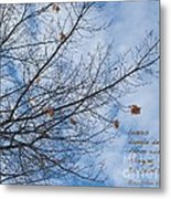 Winter Hope Metal Print