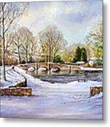 Winter In Ashford Metal Print by Andrew Read