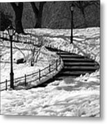 Winter In Central Park Metal Print