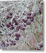 Winter In Lila Metal Print