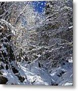 winter in the Bavarian alps 2 Metal Print