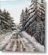 Winter In The Boons Metal Print by Shana Rowe Jackson