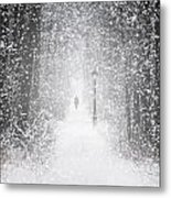 Snowing In The Forrest Metal Print