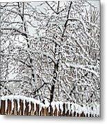 Winter In The Heartland 1 Metal Print