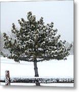 Winter In The Heartland 11 Metal Print