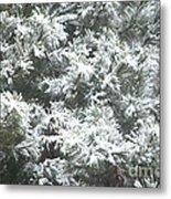 Winter In The Heartland 2 Metal Print