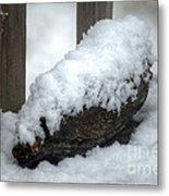 Winter In The Heartland 4 Metal Print