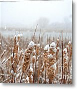 Winter In The Heartland 6 Metal Print