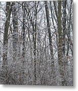Winter In The Heartland 8 Metal Print