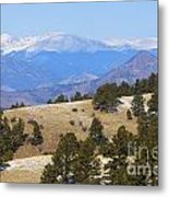 Winter In The Pike National Forest Metal Print