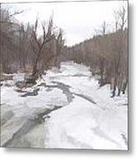 Winter In The Woods Metal Print