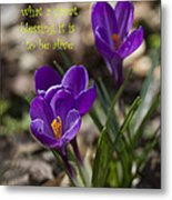 Winter Is Over - Spring Has Arrived Metal Print