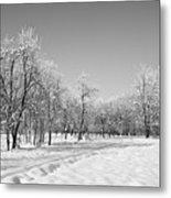 Winter Landscape In Bw Metal Print