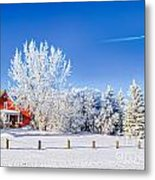 Fabulous Winter. Metal Print