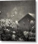 Winter Landscape With Snow Falling And Plants Metal Print