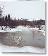 Winter Landscape With Trees And Frozen Pond Metal Print by Matthias Hauser
