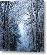 Winter Lane Metal Print