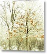 Winter Leaves Metal Print