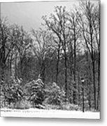 Winter Light Post Metal Print