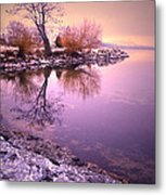 Winter Light Reflected Metal Print