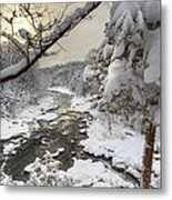 Winter Morning Metal Print by Bill Wakeley