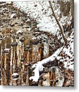 Winter - Natures Harmony Metal Print by Mike Savad