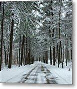 Winter On Mohegan Park Road Metal Print