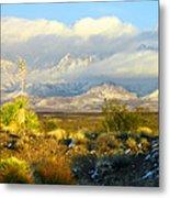 Winter In The Organ Mountains Metal Print