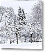 Winter Park Landscape Metal Print