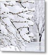 Winter Park Under Heavy Snow Metal Print by Elena Elisseeva