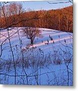 Winter Pasture Sunset Metal Print