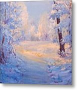 Winter Path. Metal Print