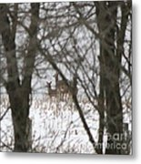 Winter Family Pause  Metal Print