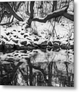 Winter Reflection Metal Print