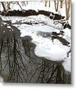 Winter Reflections Metal Print