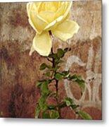 Winter Rose Metal Print