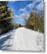Winter Scape 5 Metal Print