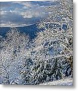 Winter Scene At Berry Summit Metal Print