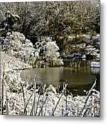 Winter Scenes 2 Metal Print