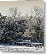 Winter Scenes Metal Print